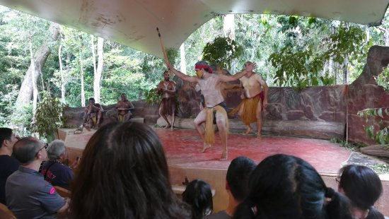 Kuranda, Coach, and Skyrail Tour: aboriginal dance performance