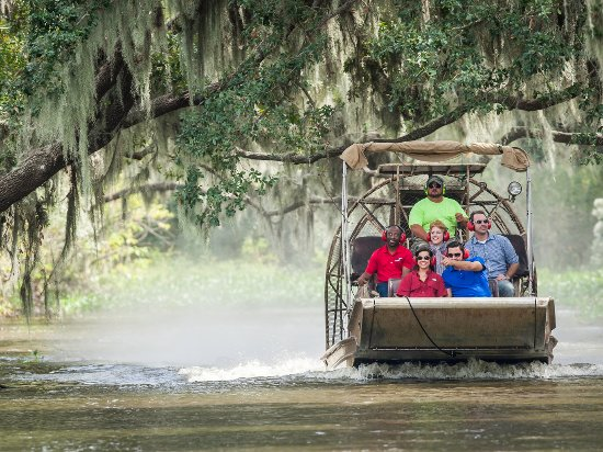 Thibodaux, LA: Swamp tours are a must-do while in Louisiana's Cajun Bayou.