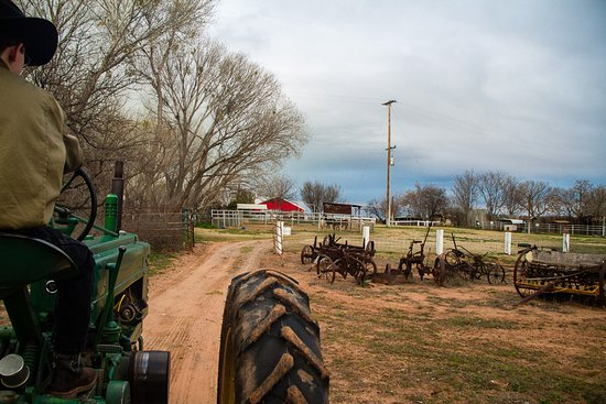 Cottonwood, AZ: Wagon Ride