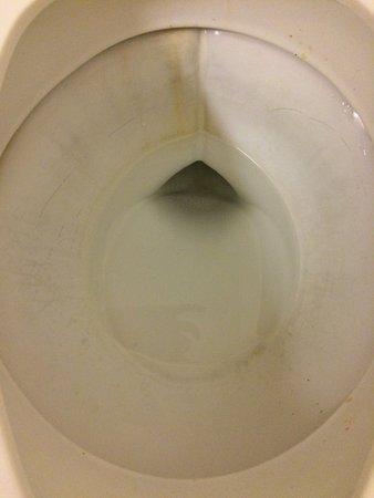 Texarkana, TX: Toilet bowl