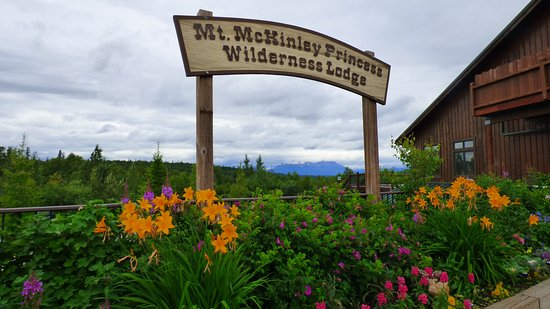 Trapper Creek, AK: On a rare clear day, Denali is visible trough the posts of this sign.