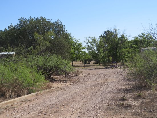Portal, Arizona: The short entry drive takes you to the cottage.