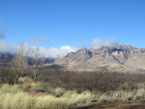 Portal, AZ: From Quailway Cottage, the famous Chiricahua Mountains are visible in the west.