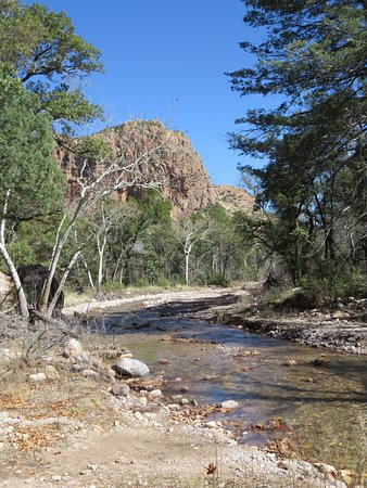 Portal, AZ: The Chiricahuas, including S. Fork of Cave Creek, are known for their birding and hiking.