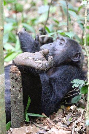 Kasese, Uganda: And playing
