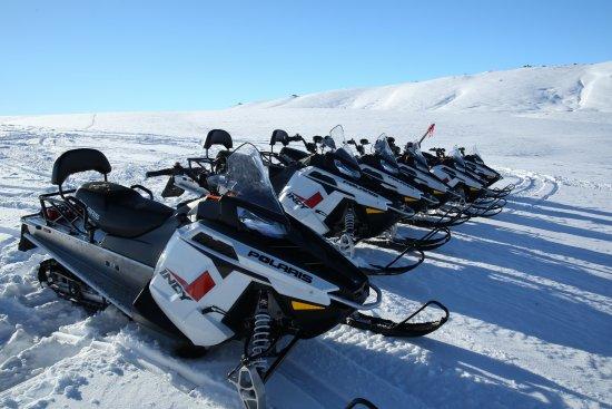 Квинстаун, Новая Зеландия: Our fleet of Polaris snowmobiles