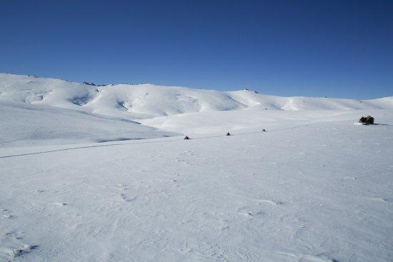 Квинстаун, Новая Зеландия: Amazing terrain we have to play with