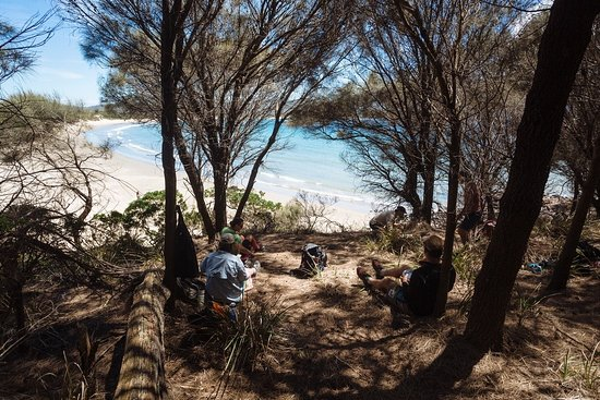 Dunalley, Australia: A shady spot for lunch or a snack, overlooking Two Mile Beach.