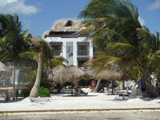 Foto de Hotel El Caballo Blanco