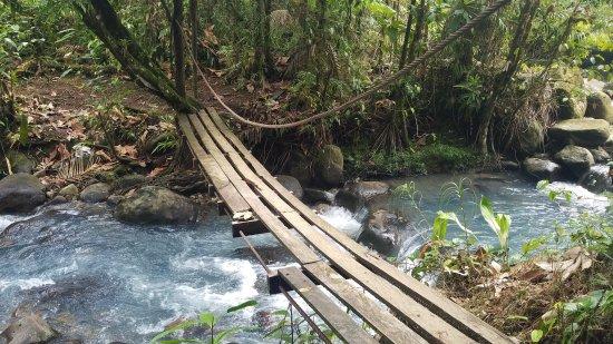 Tenorio Volcano National Park, Kostaryka: 20170203_144023_large.jpg
