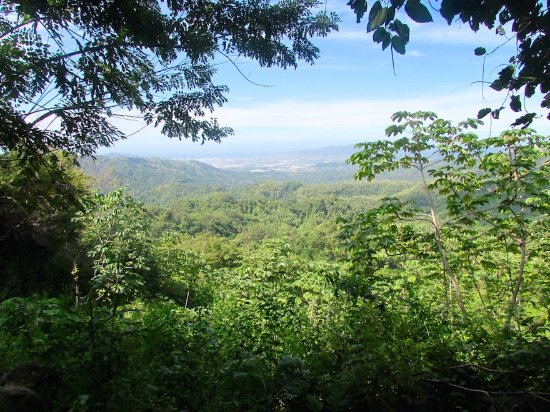 Minca, Colombia: View over Santa Marta on our one day tour