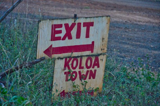 Koloa, HI: That way to town.
