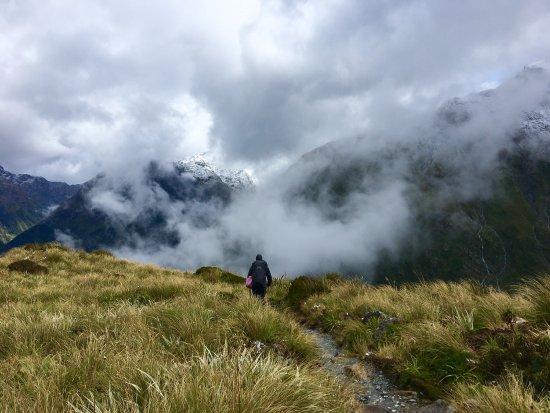Fiordland National Park, Neuseeland: photo3.jpg