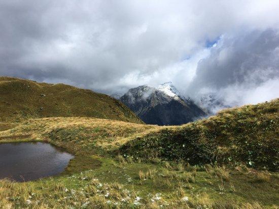 Fiordland National Park 사진