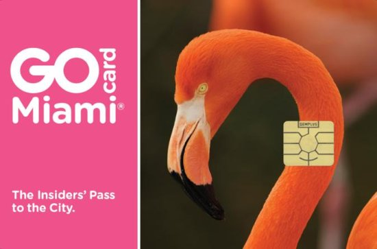 Go Miami Card with Free Admission to...