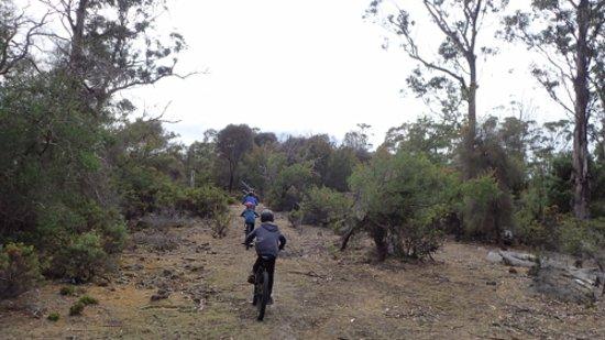 Dunalley, Australia: Family adventure