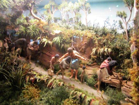 Tawhiti Museum: Colonial wars