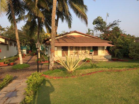 La Calypso Goa: photo0.jpg