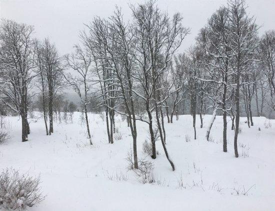 Troms, Norvège : photo2.jpg
