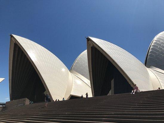 Sydney Opera House : photo9.jpg