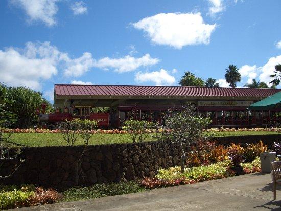ワヒアワ, ハワイ, パイナップル列車は人が集まったら出発という感じでした。