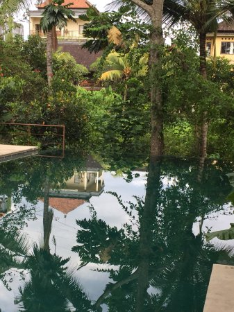 Komaneka at Monkey Forest: The infinity pool looks at a natural gully