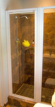 Durbanville, Sør-Afrika: Studio 1: Shower only