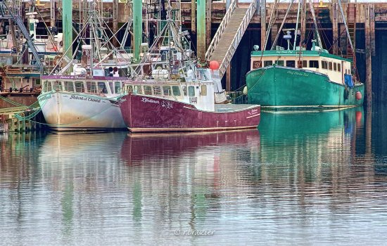 Fishing boats in Digby harbour.