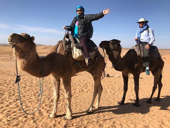 Desert Majesty Photo