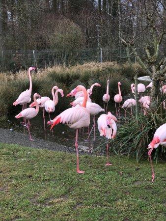 Tierpark Dählhölzli: photo3.jpg