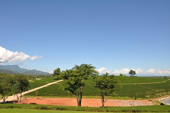 Mae Chan, Thaïlande : landscape