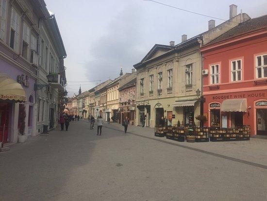 Dunavska Street