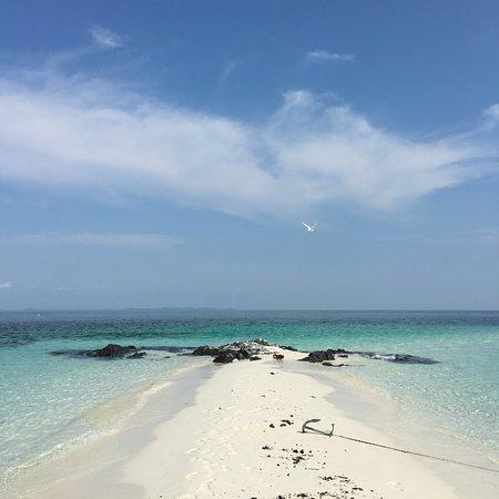 Rimba Resort: Snorkling trip