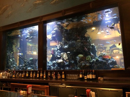 Islamorada Fish Company: photo0.jpg
