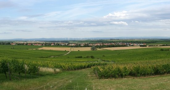 Floersheim-Dalsheim, Germany: Panorama Flörsheim-Dalsheim
