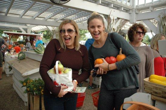 Mattituck, نيويورك: Our stop at the Farm