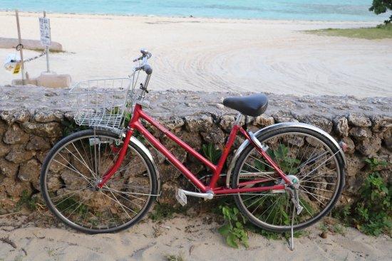 Pochi Cycle