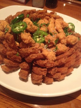 Rock Hill, SC: Blooming Onion Gone Wild