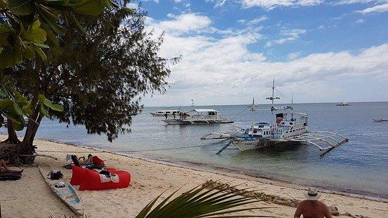 Ocean Vida Beach & Dive Resort: ホテル前のビーチ