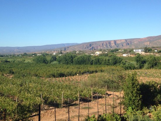 Calitzdorp, South Africa: photo3.jpg
