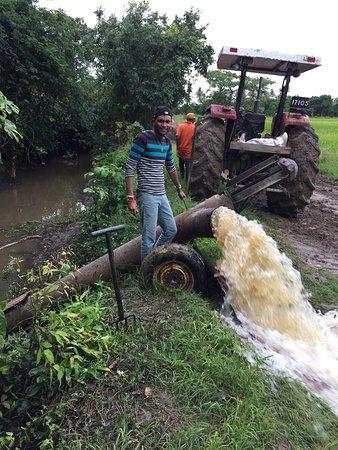 Skeldon, Guyana: Lovely stay in Berbice