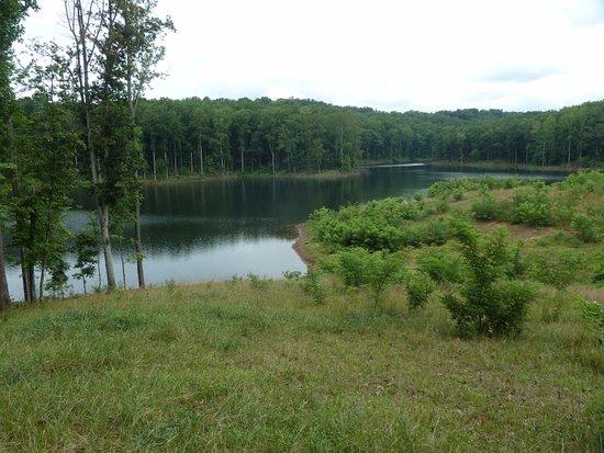 Charlottesville, Wirginia: reservoir