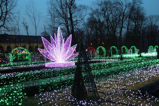 Muzeum Pałacu Króla Jana III w Wilanowie: Zimowy Park