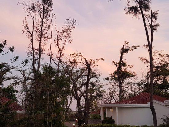 Covelong, India: il giardino intorno ai cottage al tramonto