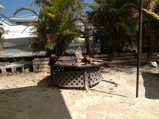 Pelican Cay Harbor Campground and Marina : View from our tent