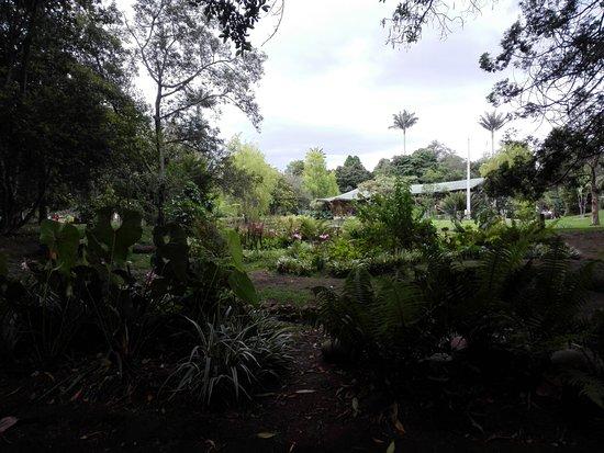 Jard N Bot Nico Picture Of Jardin Botanico De Bogota Jose Celestino Mutis Bogota Tripadvisor