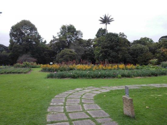 Jard n bot nico picture of jardin botanico de bogota for Jardin botanico de liubliana