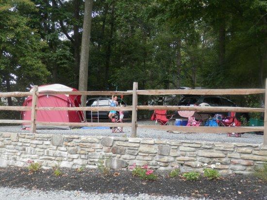 Quarryville, PA: Spacious camp site