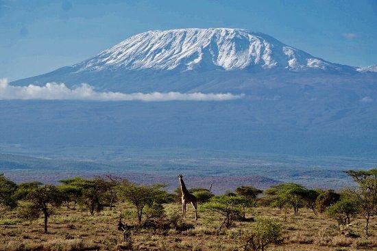 Amboseli National Park, كينيا: photo6.jpg