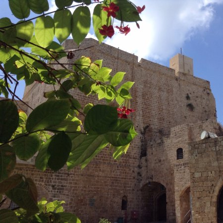 Acre Crusader Fortress